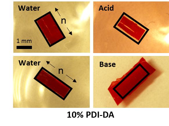 Molecularly-ordered Hydrogels with Controllable Response